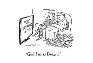 missing brexit
